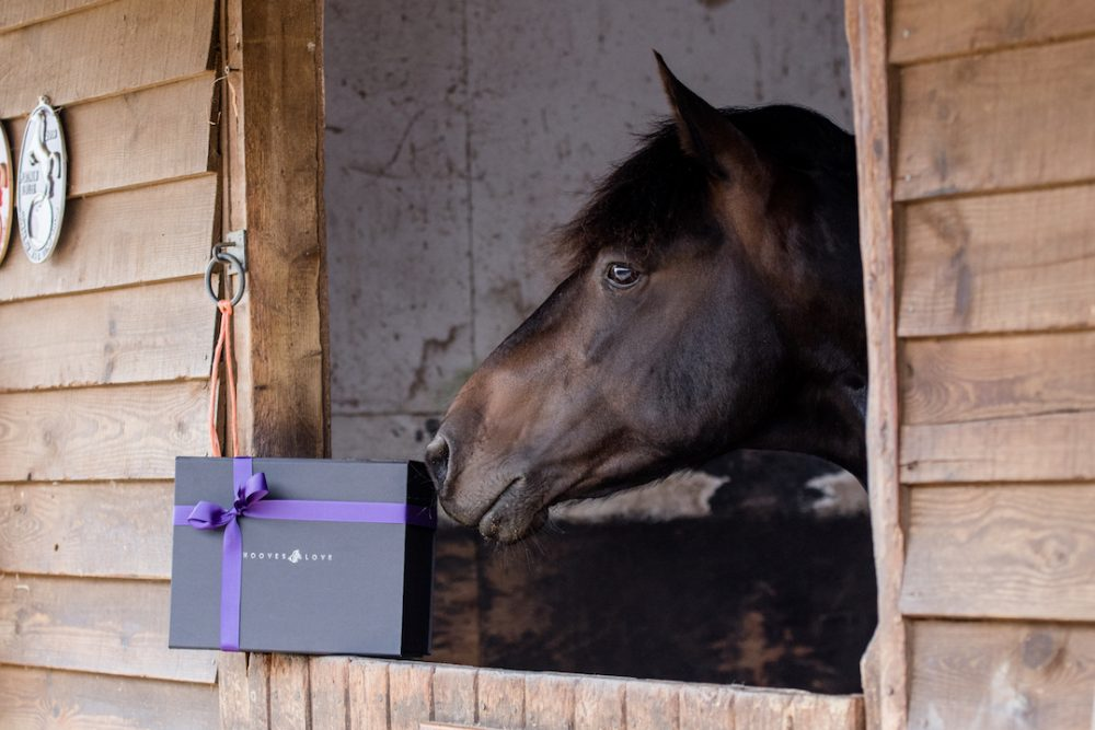 Equestrian Gifts Gift Boxes Unique Gifts For The Horse Lover